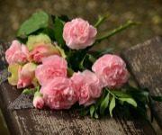 как хранить срезанные цветы