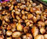 как сохранить жареные грибы