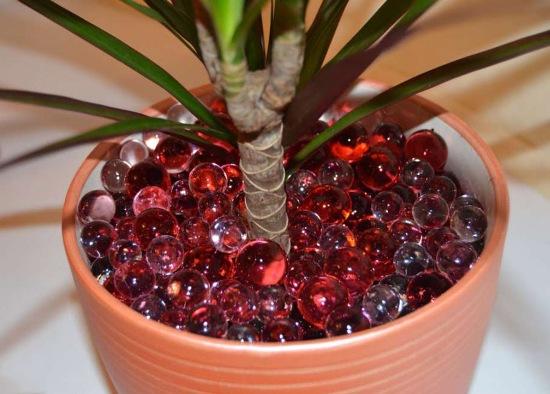 полив цветов при помощи гидрогеля