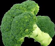 как хранить брокколи