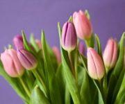 как хранить цветы в вазе