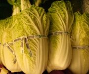 как хранить пекинскую капусту