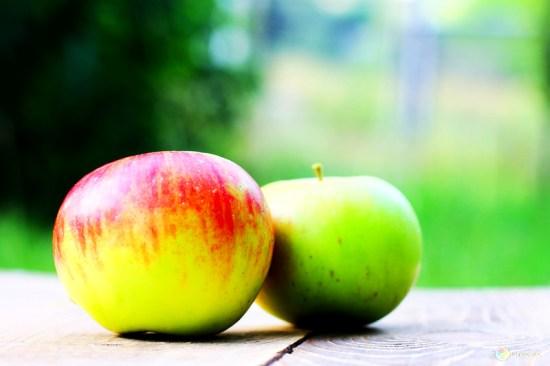 как хранить свежие яблоки