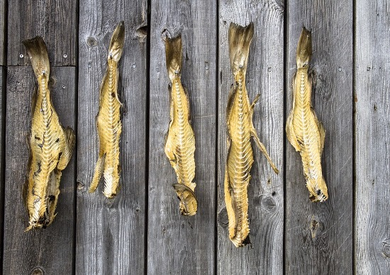 хранение сушеной рыбы в темном помещении