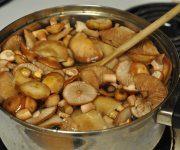 как хранить вареные грибы
