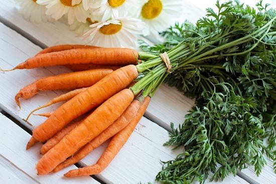 подгатовка моркови к хранению