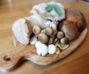 как хранить свежие грибы