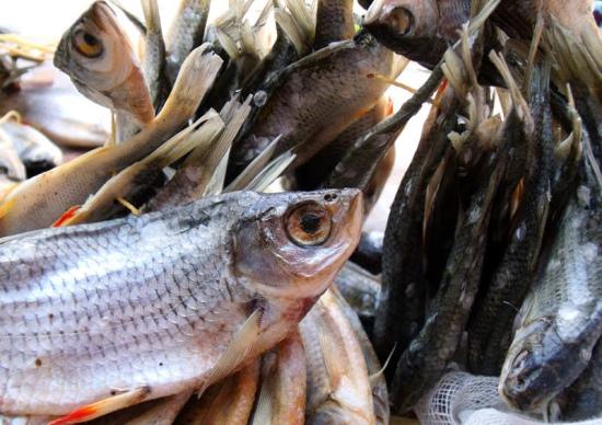 хранение вяленой рыбы